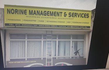 NORINE MANEGEMENT & SERVICES